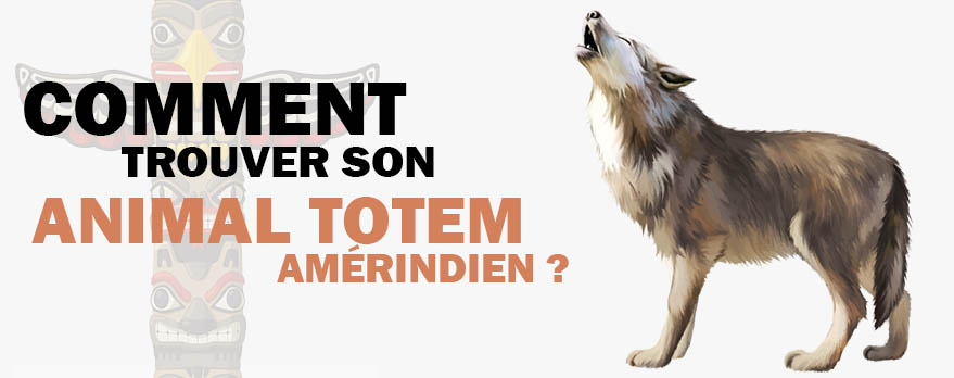 Comment Trouver son Animal Totem Amérindien ?