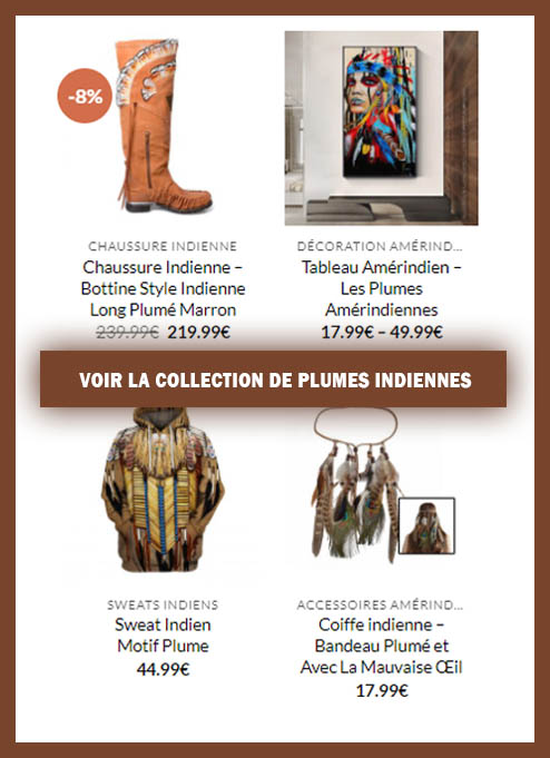 Collection Plume Indienne