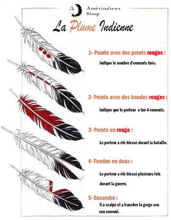 Symbole de Plume Indienne